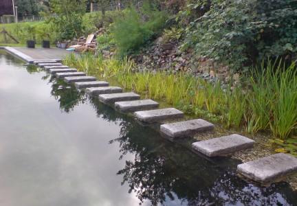 Natuurvijver aanleggen in uw tuin valle verzasca for Natuurvijver aanleggen